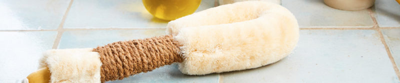 Dry Body Brushing Benefits