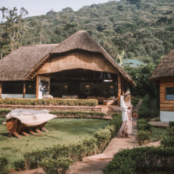 Sanctuary Retreats Gorilla Forest Camp