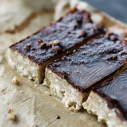 Vegan Protein Bars No Bake Hemp Seed Recipes