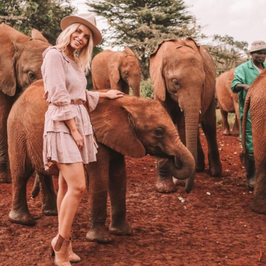 11 Things You Should Know Before Going On Safari In Africa